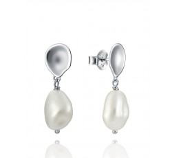 Pendientes de plata Viceroy Jewels Ref. 61000E100-68