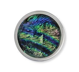 Moneda Galaxya Aqua Mi Moneda Ref. M-GAL-33-M